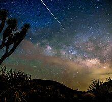 Camelopardalid Meteor Strike Over Joshua Tree Milky Way by Gavin Heffernan