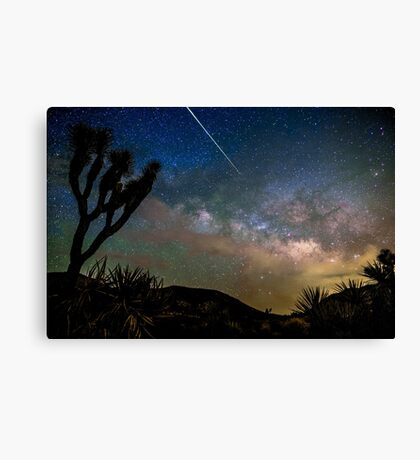 Camelopardalid Meteor Strike Over Joshua Tree Milky Way Canvas Print