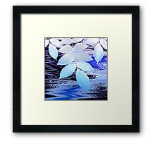 Stream Melody, Moonlight Framed Print