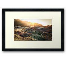 Plum Flower Village at Sunset Framed Print