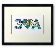 30A  Framed Print