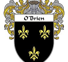 O'Brien Coat of Arms/Family Crest by William Martin