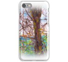 PA. LANDSCAPE iPhone Case/Skin