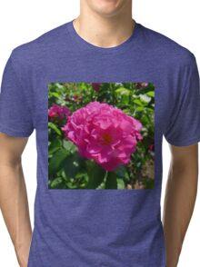 Bright Pink Shrub Rose Tri-blend T-Shirt