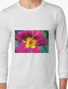 Red Daylilly Long Sleeve T-Shirt