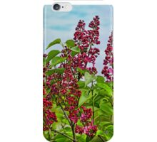 Up To The Clouds iPhone Case/Skin