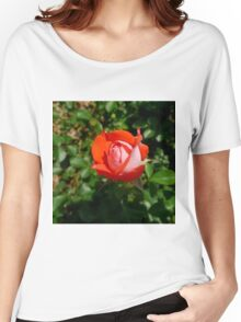 Orange Impressionist Rose Women's Relaxed Fit T-Shirt