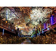 Neon Spring Photographic Print
