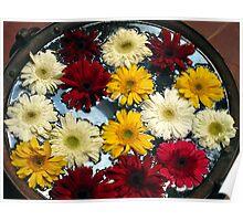 Kathmandu Flowers Poster