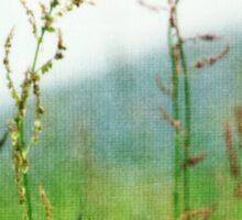 In the Meadow - JUSTART © Sticker