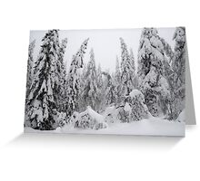 Winter forest, heavy snow Greeting Card