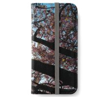 Japanese cherry tree in contrast iPhone Wallet/Case/Skin