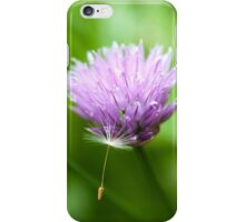 Dandelion Seed on a Chive Flower iPhone Case/Skin