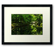 Summer Reflections 1 Framed Print