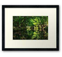 Summer Reflections 2 Framed Print