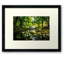 Summer Reflections 4 Framed Print