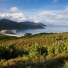 Norman Bay - Wilsons Promontory by Timo Balk