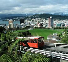 Wellington by davidandmandy