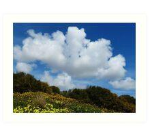 Wildflowers And Sky Art Print