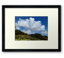 Wildflowers And Sky Framed Print