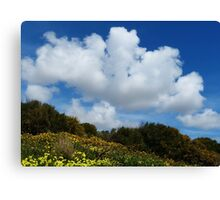 Wildflowers And Sky Canvas Print