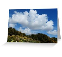 Wildflowers And Sky Greeting Card