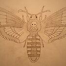 Death's-head Hawk moth. by DrNagel