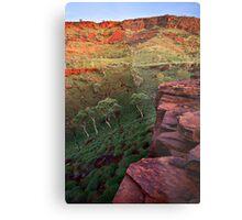 The Painted Pilbara Metal Print