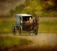Amish - The Plain People by Dyle Warren