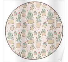 Cactus and Succulent Plants Poster