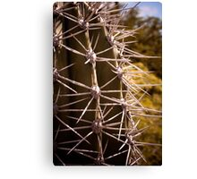 Prickled Canvas Print