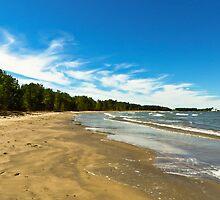 Lake Erie at Sheldon Marsh by SRowe Art