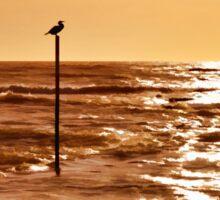 Sky and sea Sticker