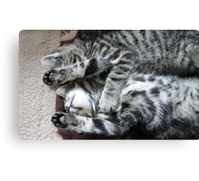 Tiredy Tabby Twins Canvas Print
