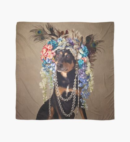 Shelter Pets Project - Midnight Scarf