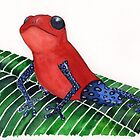 red frog by ElisaLeFreak