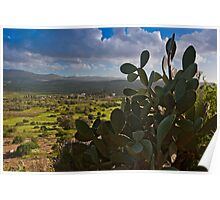 View of Messara Plain from the hill of Phaestus in Crete Poster