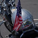Patriot Guard Riders by Lucinda Walter