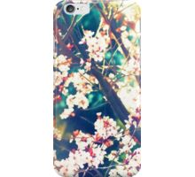 Color 153 iPhone Case/Skin