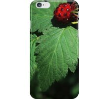 #1318  Raspberry iPhone Case/Skin