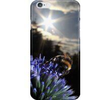 Bumblebee on globe thistle iPhone Case/Skin