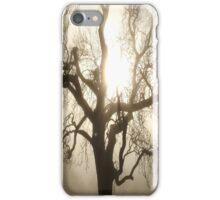 Foggy Tree iPhone Case/Skin