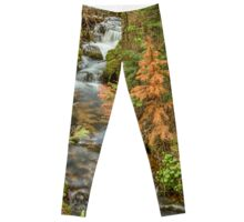 Rusty The Pine Tree and The Flowing Stream Leggings