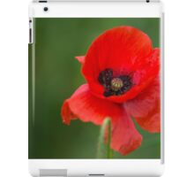 Single Poppy iPad Case/Skin