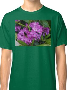 Beautiful Rhododendron Blossoms Classic T-Shirt