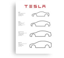 Tesla (text) Canvas Print