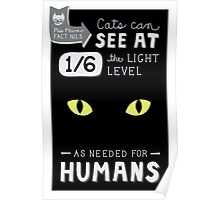 Cats can see at 1/6th the light level as needed by Humans Poster