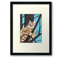 Cat on a Tree Framed Print