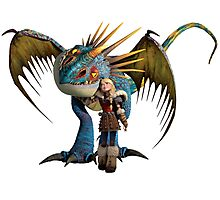 How to Train Your Dragon 01 Photographic Print