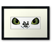 How to Train Your Dragon 02 Framed Print